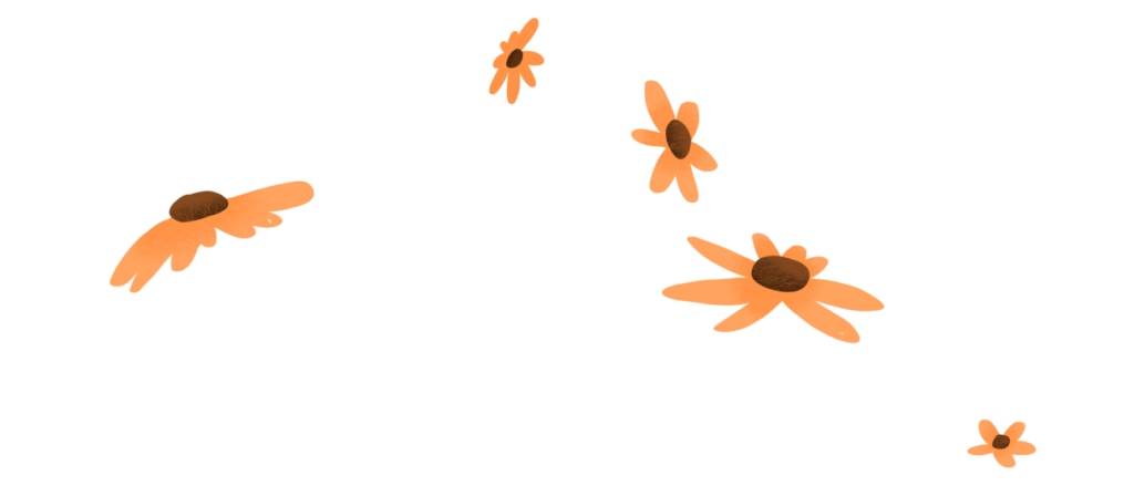 4 yellow flower blossoms on an empty background