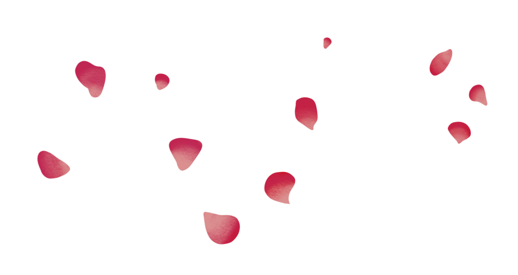 Illustration of pink flower petals