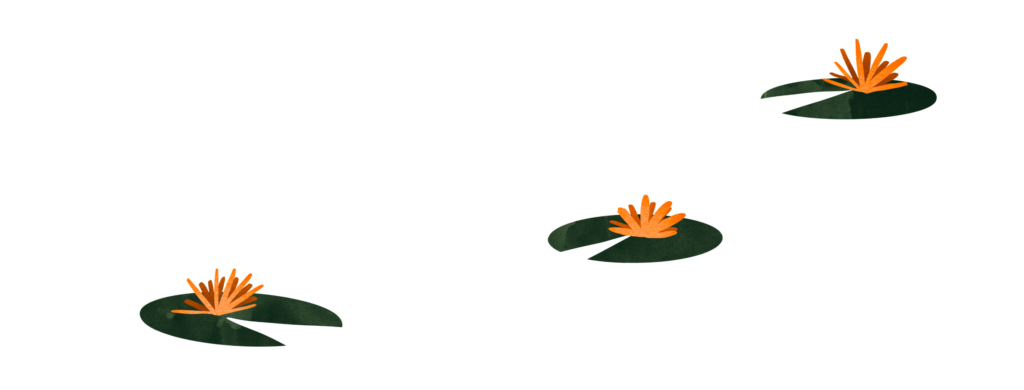 Illustration of 3 lilypads with orange flowers